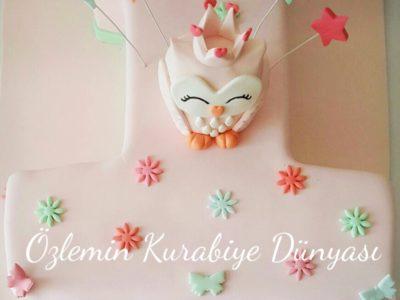 Baykus temalı 1 yaş pastasi